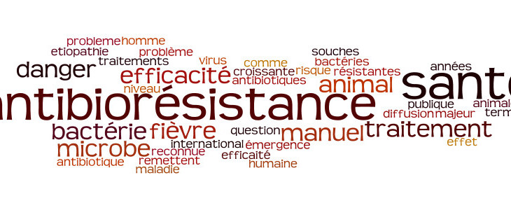 Etiopathe Paris: Antibioresistance